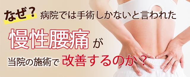 慢性腰痛1